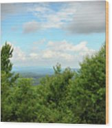 Fire Tower View - Pipestem State Park Wood Print