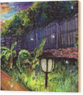 Fireflies In Woodfin Wood Print