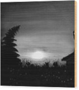 Firefly Frenzy In Black And White Wood Print