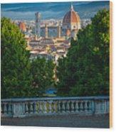 Firenze Vista Wood Print