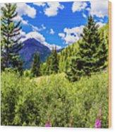 Fireweed, Deer Park Creek, Grand Turk Mountain Wood Print