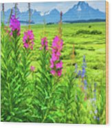 Fireweed In The Foreground 2 Wood Print