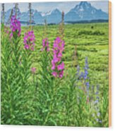 Fireweed In The Foreground Wood Print