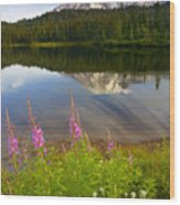 Fireweed Reflections Wood Print