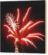 Firework Hibiscus Wood Print