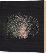 Firework Silhouettes Wood Print