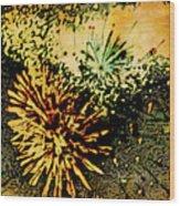 Fireworks 1 Wood Print