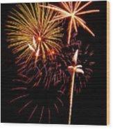 Fireworks 1 Wood Print by Michael Peychich