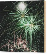 Fireworks 4 Wood Print by Michael Peychich