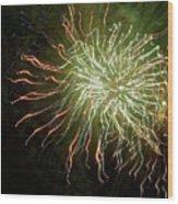 Fireworks 7 Wood Print