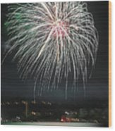 Fireworks And Wildlife Wood Print
