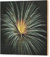 Fireworks Green Flower  Wood Print