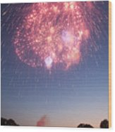 Fireworks Over Lincoln Wood Print