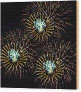 Fireworks - Yellow Spirals Wood Print