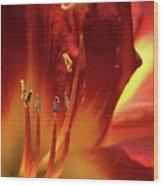 Firey Lily Wood Print