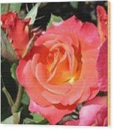 Firey Passion Rose Wood Print