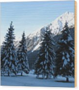 Firs In The Snow Wood Print