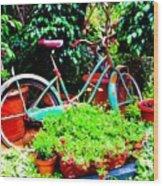 First Bike Wood Print