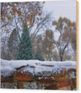 First Colorful Autumn Snow Wood Print