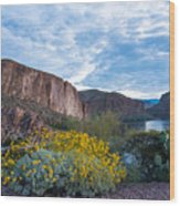 First Day Of Spring - Canyon Lake Wood Print