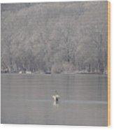 First Day Of Spring Swan Lake Wood Print