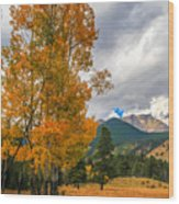 First Fall Colors In Rocky Mountain National Park Wood Print