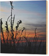 First Landing Sunset Wood Print