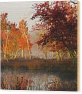 First Light At The Pine Barrens Wood Print