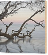 First Light - Hunting Island South Carolina Wood Print