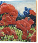 First Of Poppies Wood Print