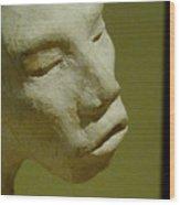 First Sculpture Wood Print