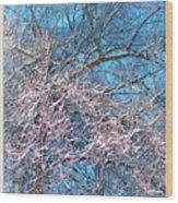 First Snow At Dawn Wood Print