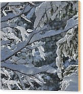 First Snow II Wood Print