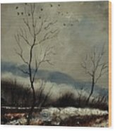 First Snow In Harroy Wood Print