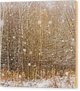 First Snow. Snow Flakes I Wood Print
