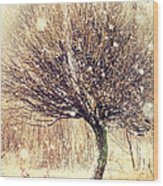 First Snow. Snow Flakes Wood Print