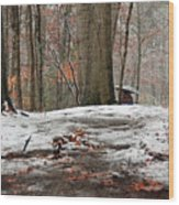 First Snowfall - A Walk In The Woods Wood Print