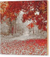 First Snowfall In Duluth Wood Print