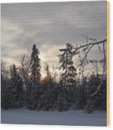 First Winter Sunrise Of 2011 Wood Print
