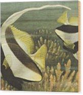 Fish 8 Wood Print