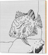 Fish And Rock Wood Print