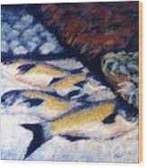 Fish And Shellfish Wood Print