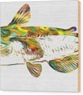 Fish Art Catfish Wood Print