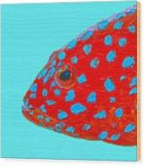 Fish Art - Strawberry Grouper Wood Print