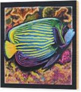 Fish Number 2 Wood Print