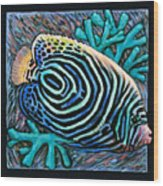Fish Number Nine Wood Print