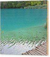Fish Of Kaluderovac Lake Wood Print