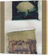 Fish Over Paris Wood Print