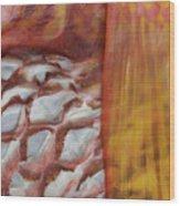 Fish Skin Wood Print
