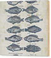 Fish Species Historiae Naturalis 08 - 1657 - 13 Wood Print